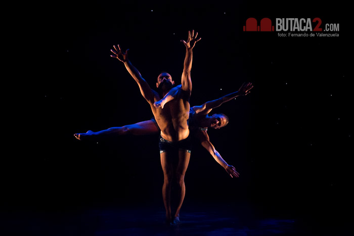 Momix_Forever